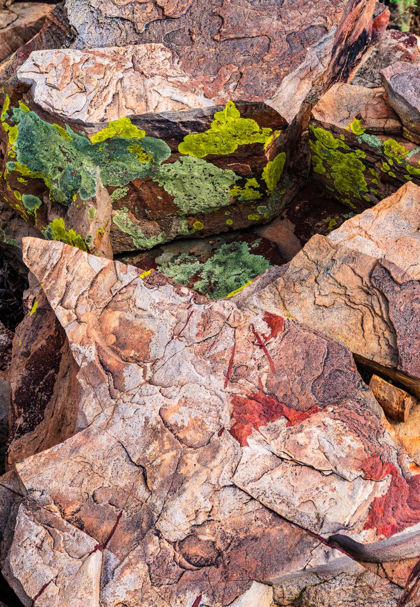 Photo credit Shane McDermott - Salt River Canyon Photography Workshop