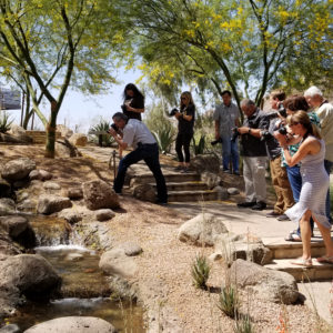 Beginners Photography Workshop in Phoenix