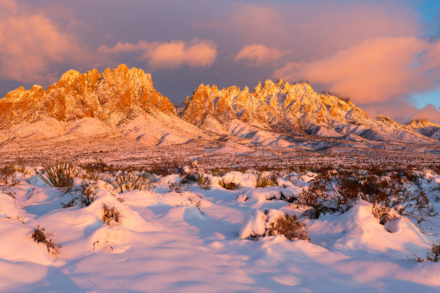 Unm Winter Intersession Courses 2020.Southern New Mexico Winter Photography Workshop
