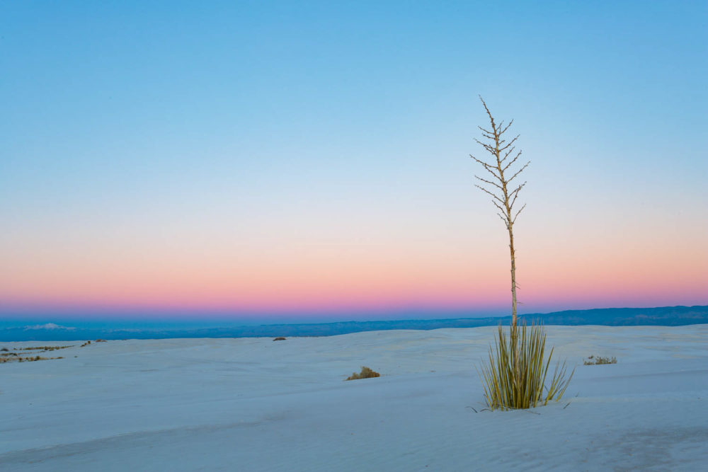 Photo credit Michael DeYoung - New Mexico Winter Photo Sampler