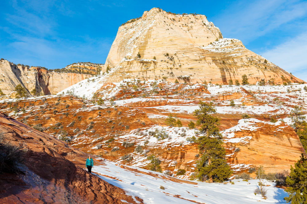 Photo credit Michael DeYoung - Zion in Winter