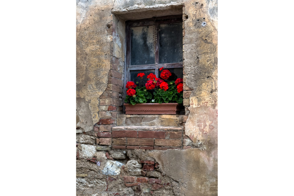 Photo credit Brian Hayward - Villages of Tuscany