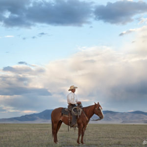 Photo credit Scott Baxter - Ranching Arizona