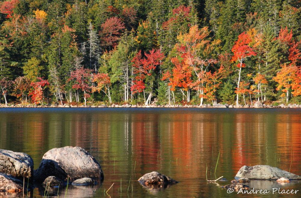 Acadia Photo Workshop