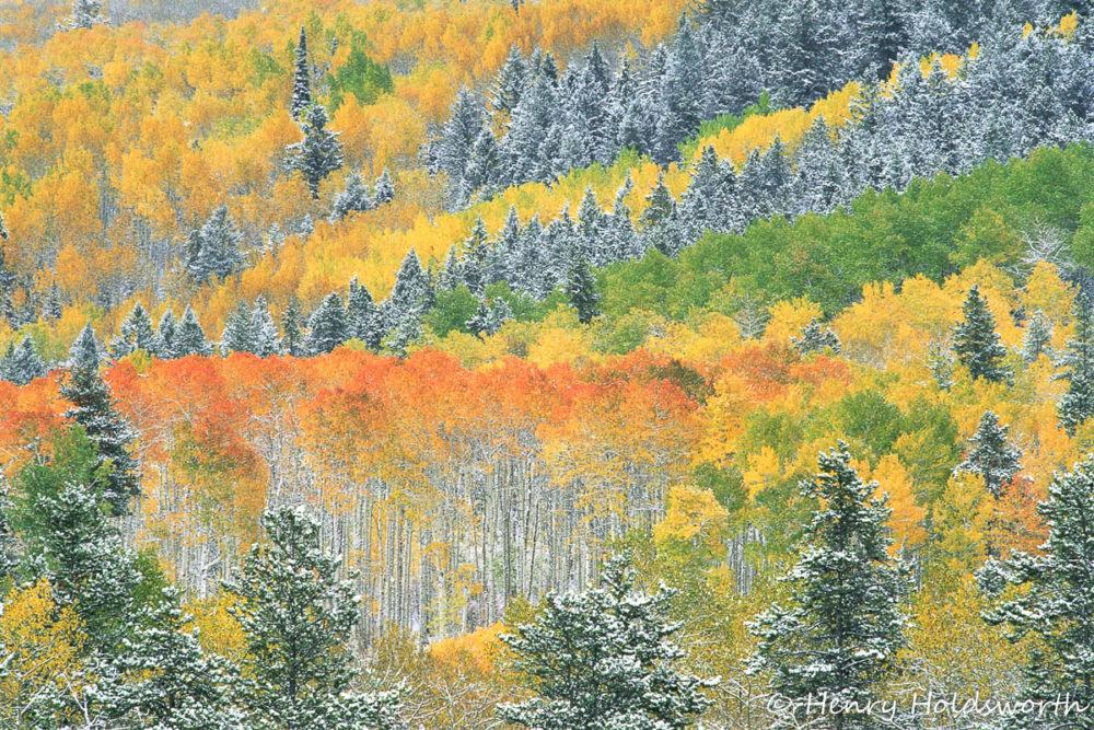 Fall Grand Teton Photo Workshop