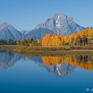 Fall Grand Teton Photo Workshop