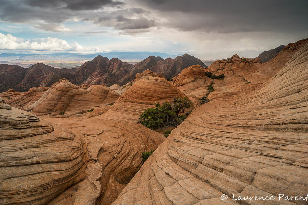 Yant Flat, Valley of Fire and Snow Canyon Photo Workshop