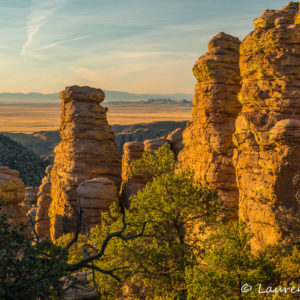 Chiricahua & Dragoons Photo Workshop